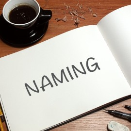 EL NAMING PARA REPRESENTAR UNA MARCA